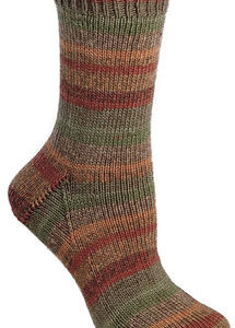 Berroco Comfort Sock 1812