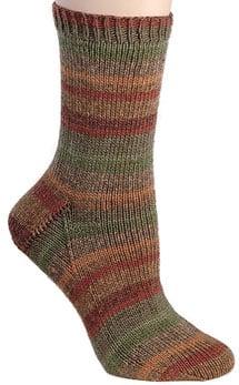 Berroco Comfort Sock 1812 1