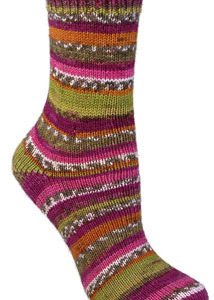Berroco Comfort Sock 1816