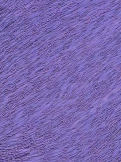 Zooey Iris DK 1