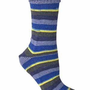 Berroco Comfort Sock 1832